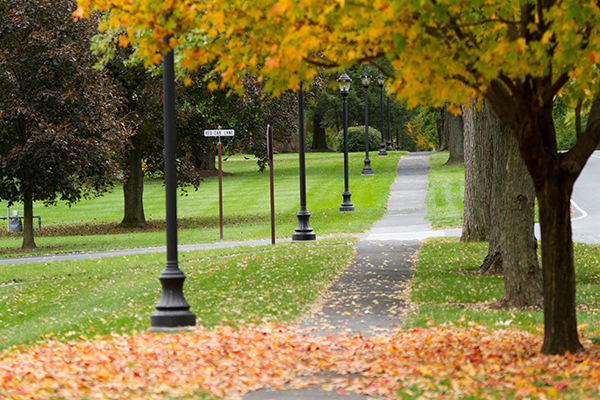 Campus Walking Path in Fall