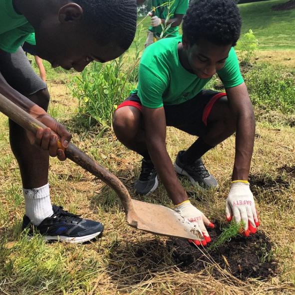 Student participate in plantation