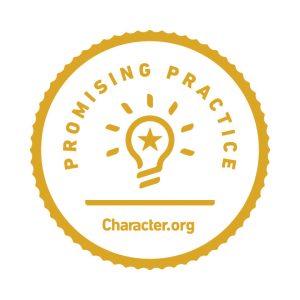 Promising Practice_Badge