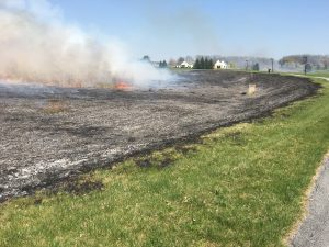 The DCNR Bureau of Forestry visited Milton Hershey School's campus to perform prescribed burns on several of the school's meadows.