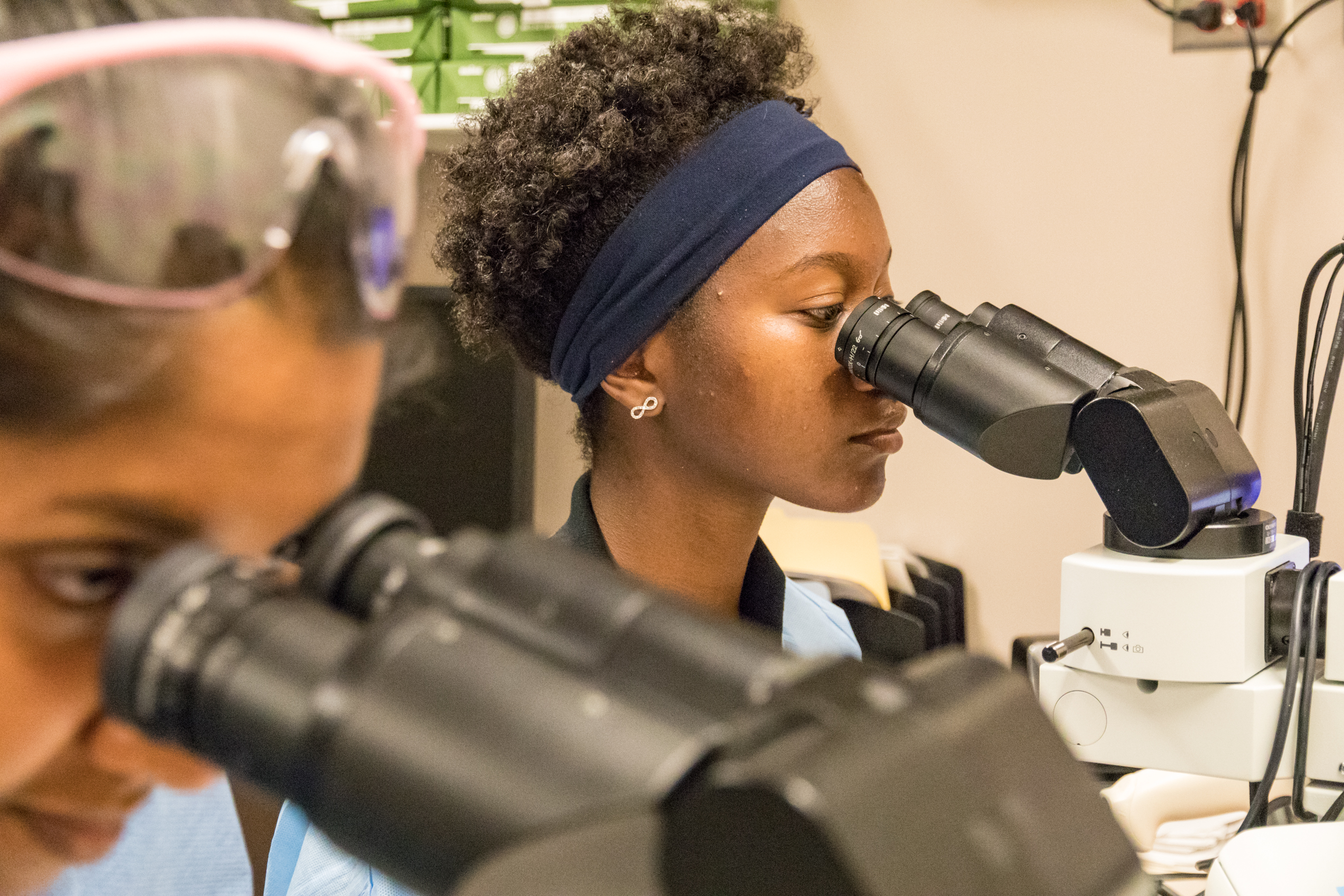 Students looking through microscopes.