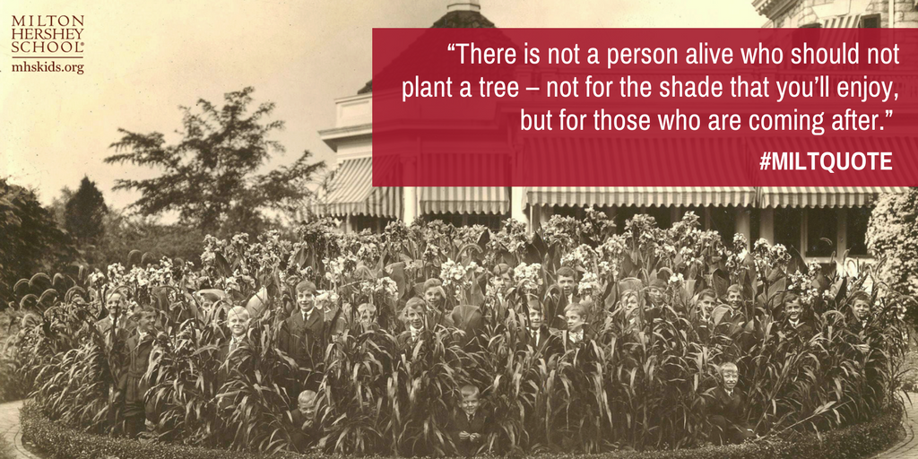 Milton Hersheys quote about trees and nature