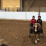 MHS sophomore competes at state 4-h show