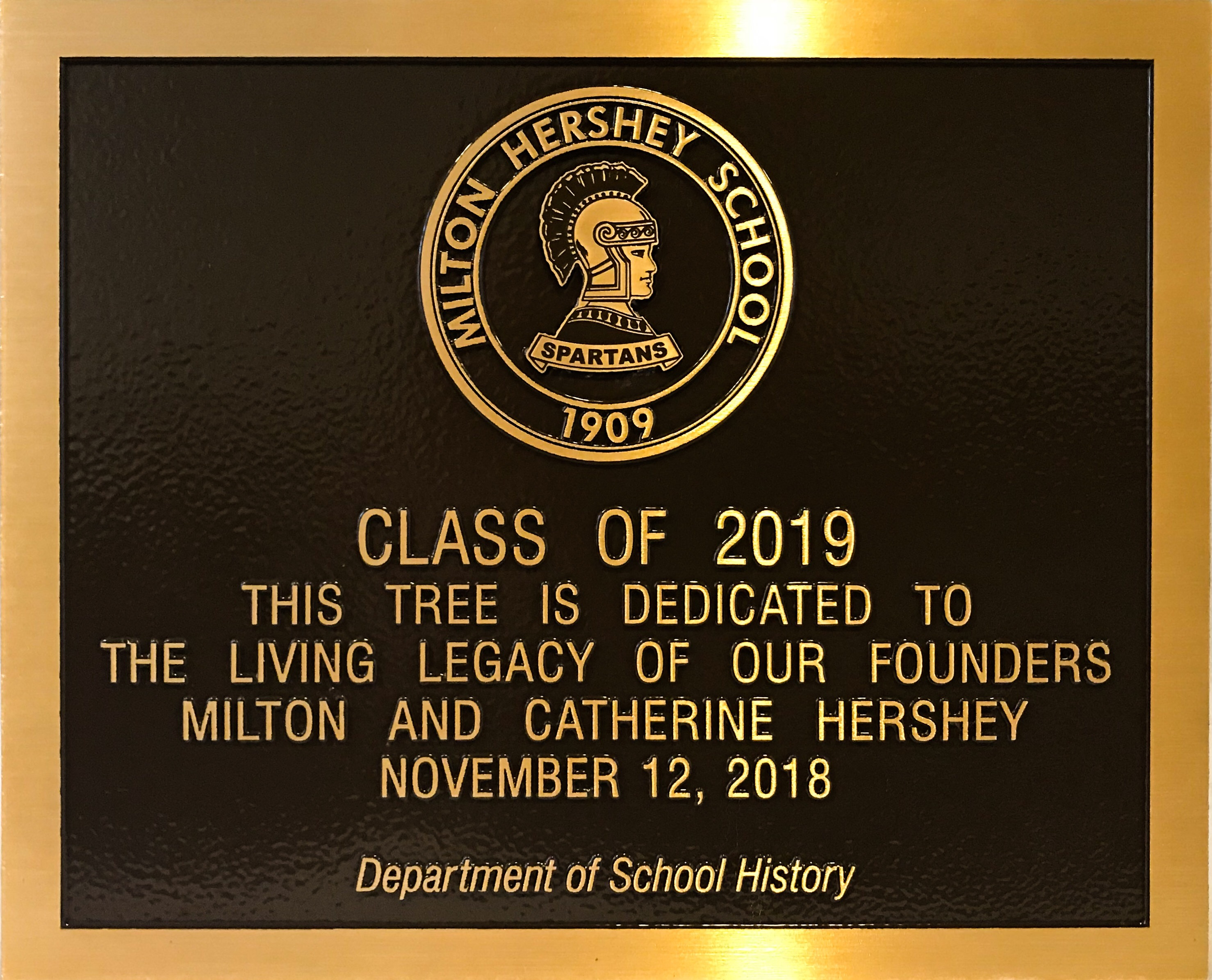 MHS students put a plaque on the tree