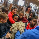 Elementary students learn how to shear goats