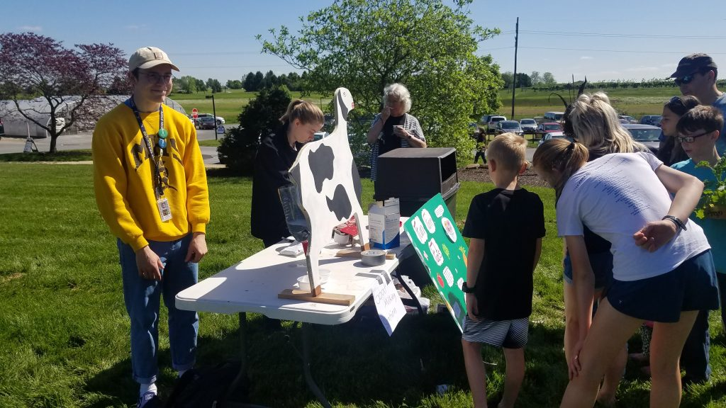 Agriculture festival visitors participate in hands-on learning activities.