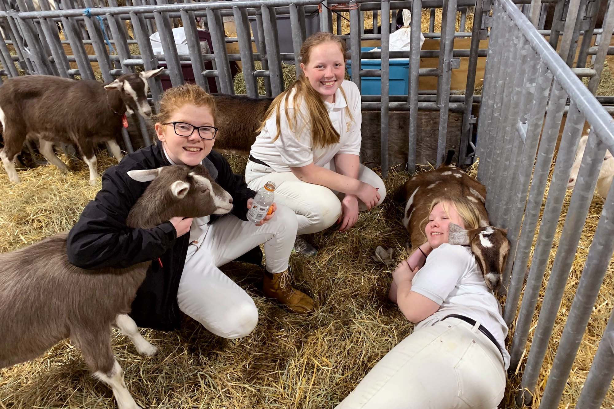 Milton Hershey School Agricultural and Environmental Education students take a break with their goats during the PA Farm Show.